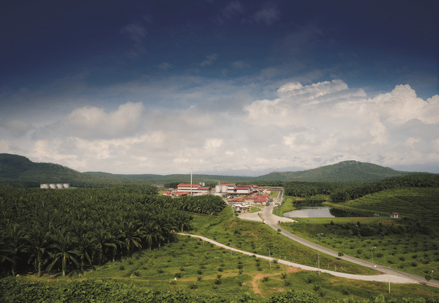 Towards a more responsible industry – Sime Darby Plantation's journey to stop deforestation and raise living standards